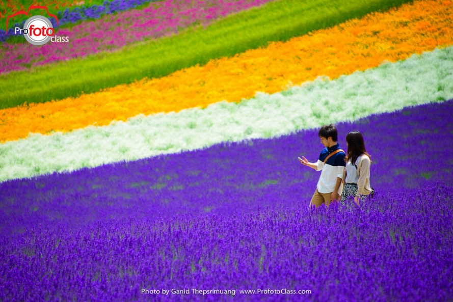 Hokkaido-1